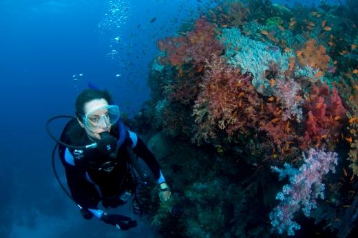 lisa in Fiji