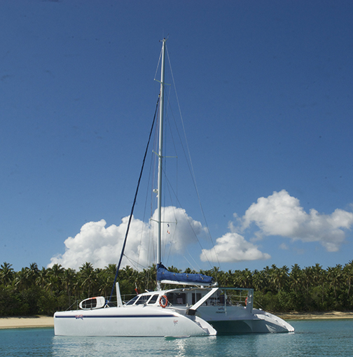 53 foot sailing boat called Wildlife